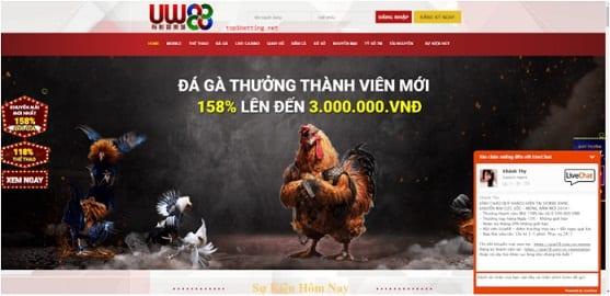 Đá gà trực tuyến UCW88 1