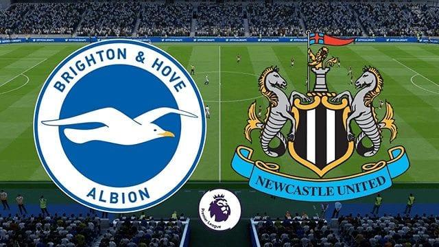 Nhận định Brighton & Hove Albion vs Newcastle lúc 00h00 ngày 21/7/2020